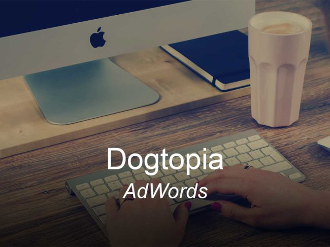 dogtopia-optimizedwebmedia-clients-adwords-ppc