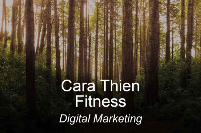 carathienfitness-optimizedwebmedia-clients-digitalmarketing