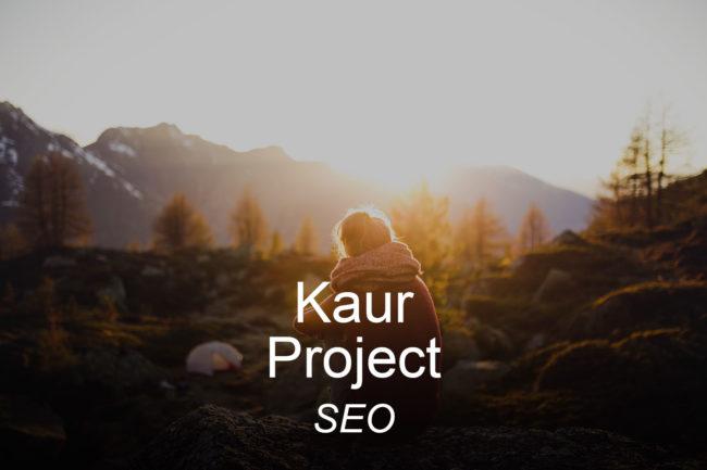 kaurproject-optimizedwebmedia-clients-seo